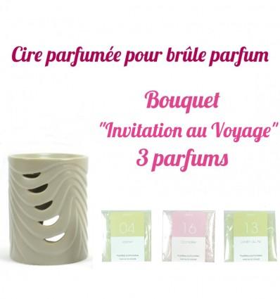 """Pastilles de cire parfumée, Bouquet """"Invitation au Voyage"""" 3 parfums - Drake"""
