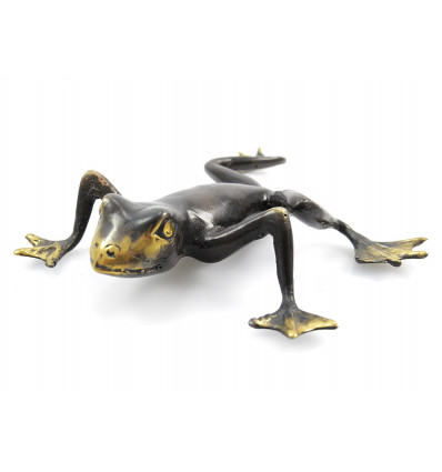 Statue frog in bronze. Curio collection rare. Purchase.