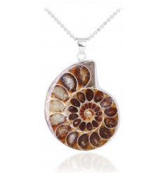 Necklace with pendant Ammonite Fossil